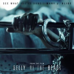 Belly of the Beast: See What You've Done Bande Originale (Mary J. Blige, Mary J. Blige, Mary J. Blige) - Pochettes de CD